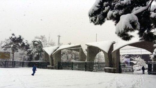 آزادی تعدادی از دانشجویان بازداشتی دانشگاه تهران