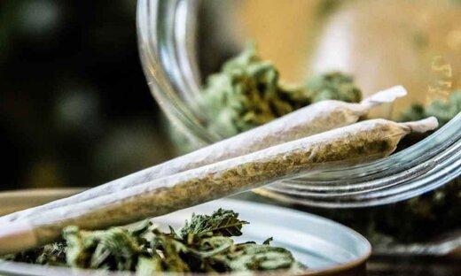 کشیدن «گل» جرم است؟/ پاسخ رییس پلیس مبارزه با موادمخدر ناجا
