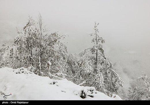 بارش برف در رامسر