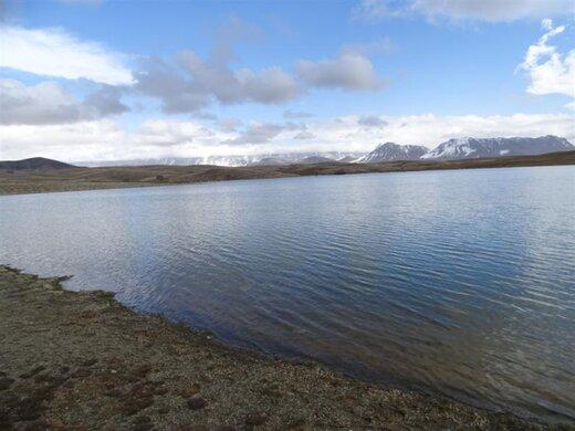 افزایش سطح مناطق شکار و صید ممنوع در استان لرستان