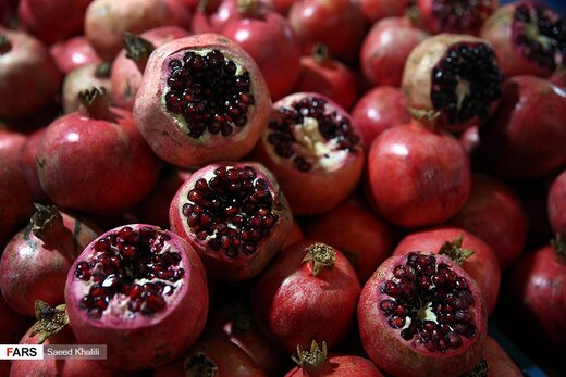 جشنواره میوه بهشتی در تهران