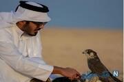 برادر امیر قطر در جزیره ابوموسی مشغول شکار پرنده