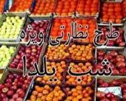 """آذرماه، آغاز طرح نظارتی""""یلدا""""دراستان چهارمحال وبختیاری"""