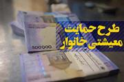 فیلم | معاون وزیر رفاه: نمیخواهید ریز حسابهایتان چک شود، از یارانه معیشتی انصراف دهید!