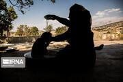 تصاویر | زندگی زنان بختیاری کنار چشمه