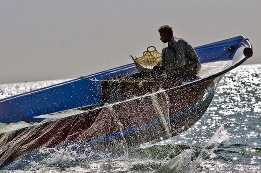 فیلم   صیادان چینی قانون را دور زدند و در خلیج فارس ماهی میگیرند؟