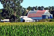 تصاویر زیبای اینستاگرام از یک زوج کشاورز و محصولاتشان