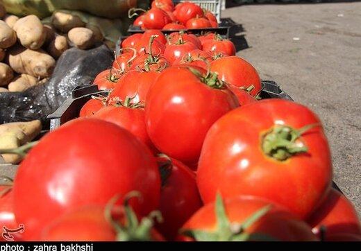 قیمت عمده فروشی انواع میوه اعلام شد/ گوجه ۹ هزار تومان+ جدول