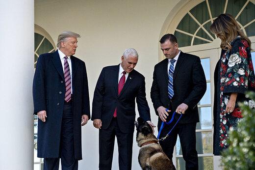 فیلم | شجاع ترین سگ دنیا از نظر ترامپ
