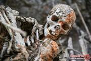 آیینهای عجیب و غریب برای خداحافظی با مردگان در دنیای مدرن امروز! +تصاویر