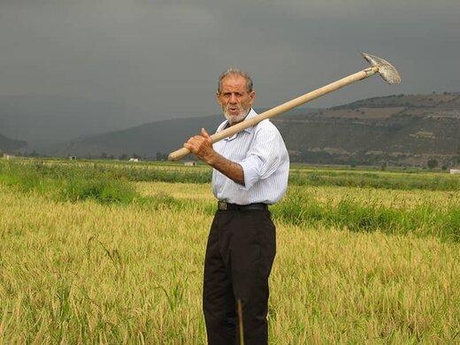رابطه عباس کیارستمی با بازیگران فیلمهایش