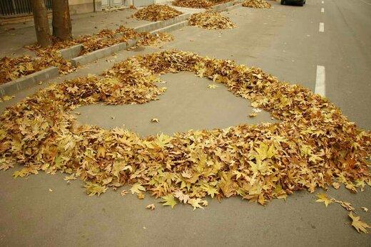 هنرنمایی پاکبانان ارومیهای با برگهای پاییزی / عکس