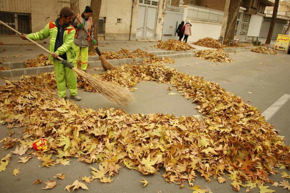 هنرنمایی پاکبانان ارومیهای با برگهای پاییزی
