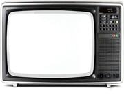 نیوشا ضیغمی و پولاد کیمیایی هم تلویزیون را تحریم کردند