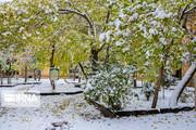 هوای کردستان برفی میشود