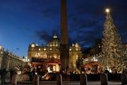 فیلم | چراغهای بزرگترین درخت کریسمس در واتیکان روشن شد