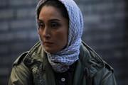 «آشغالهای دوستداشتنی اصل» متقاضیفیلم فجر/امیریوسفی برای هفتمینبار فرم جشنواره پر کرد