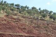 آموزش و مشارکت مردم شرط اصلی حفاظت موثر از خاک است
