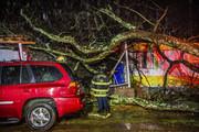 تصاویر   خسارت گردباد مهیب در لوئیزیانای آمریکا