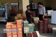 راهاندازی میادین میوه و ترهبار در استانهای سراسر کشور