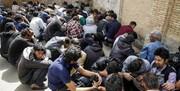 پاکسازی «دره فرحزاد» رقم خورد/ جمعآوری ۲۲۰ معتاد متجاهر