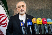 Nuclear chief: Iran not to hesitate to defend security