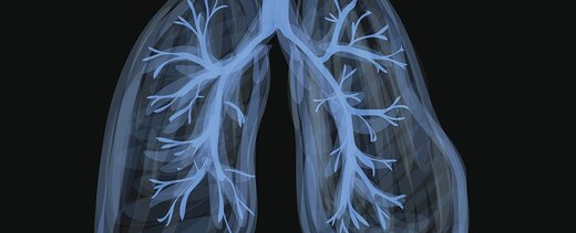 آیا چربی بر ریه هم اثر میگذارد؟