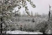 پیشبینی بارش برف و باران در البرز