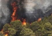 ۶۸ هکتار از جنگلهای گیلان در آتش سوخت
