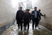 ببینید | واکنش استاندار خوزستان به ویدئوی جنجالی:اینکه دستم را در آب بگیرند که نیفتم،کار خلاف شرعی است؟