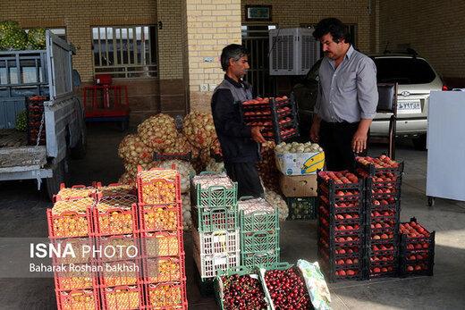 کدام میوهها گرانتر شدند؟