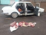 دستگیری متخلفین شکار غیر مجاز گراز در رومشکان