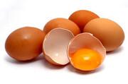 گوشت و مرغ گران است؟ جایگزین دارد