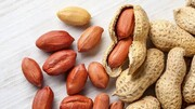 درمان حساسیت به بادام زمینی در کودکان