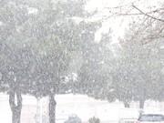 بارش اولین برف زمستانی در ارومیه / احتمال کاهش دما تا منفی ۶درجه