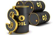قمصری:آمریکا در بلند مدت نیازمند نفت خاورمیانه است