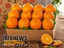 رازهای شگفتانگیز خوردن پرتقال در صبحانه
