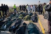 ۱۱ دانشآموخته دانشگاه شریف در میان جانباختگان سقوط هواپیما/ اسامی