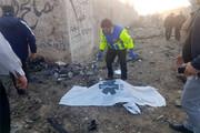 جان باختن فرزندان یک مسئول در حادثه هواپیمای اوکراین