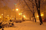 ببینید | امشب، سردترین شب سال تهران تا امروز!