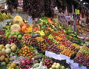 نمیتوان انتظار داشت میوه به قیمت سال گذشته عرضه شود