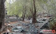 گلم دختر کش، آبشاری زیبا اما عجیب در کرمان!