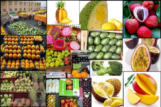 رخنمایی میوههای ممنوعه در فضای مجازی
