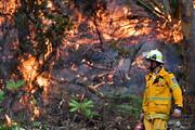 فیلم | استرالیا هنوز در آتش میسوزد/ تصاویر هوایی از جنگلهایی که بیابان شدند!