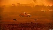 آتشسوزی جنگلها با اقتصاد استرالیا چه کرد؟