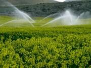 کسب رتبه برتر ۵ تولید کننده و بهره ور البرزی در بخش کشاورزی کشور