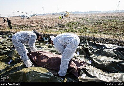 جانباختگان ایرانی سانحه هوایی در حکم «شهید» محسوب میشوند