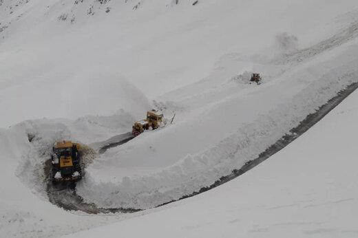 ببینید | بارش یک متری برف در کردستان