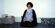 پیام تسلیت آیتالله سیستانی برای درگذشت چهره برجسته هندوستان