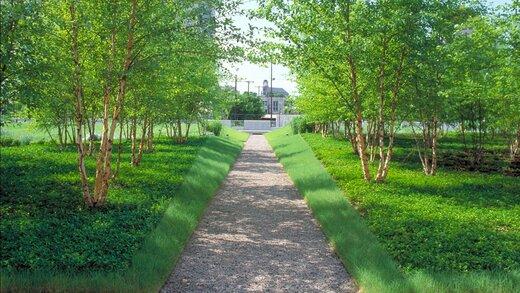 توسعه فضای سبز، اولویت اقدامات شهرداری تبریز در سال ۹۹